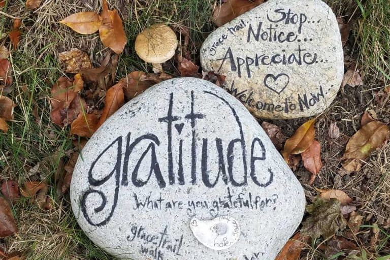 Everyday gratitude ….